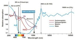 Absorption of Laser Wavelengths